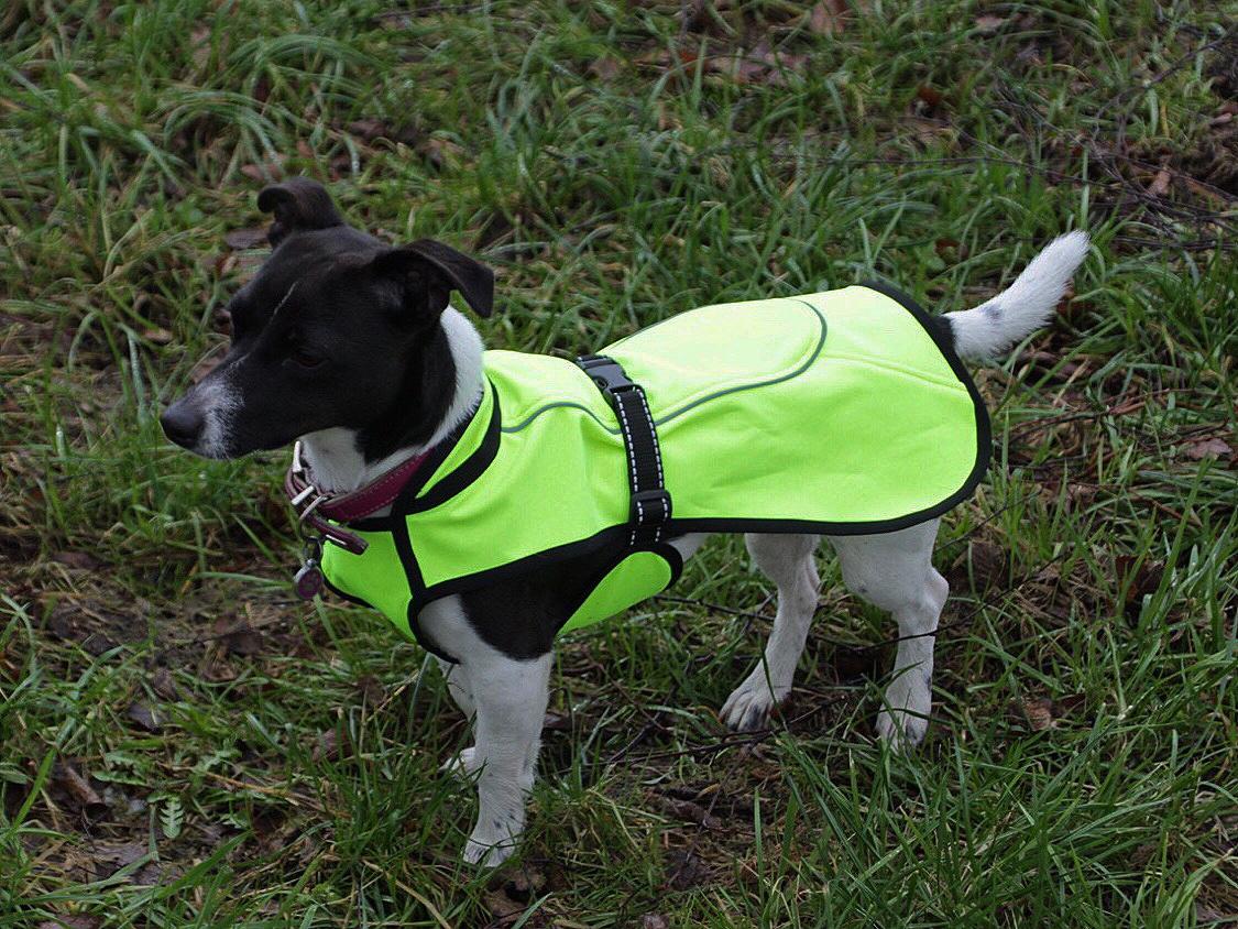 Hundemantel Sammy neongelb